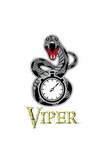Viper Timing Systems