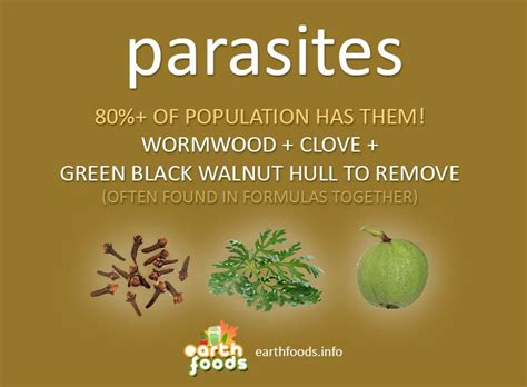 Over 80% of the population showing + for #parasites