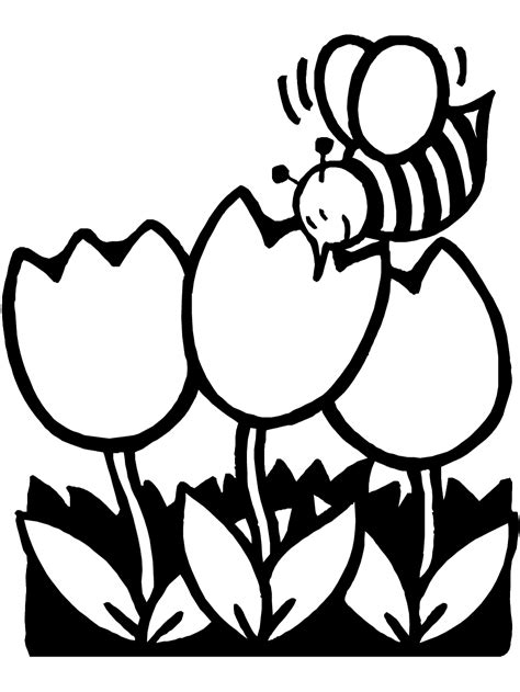 Spring Coloring Pages 2018- Dr