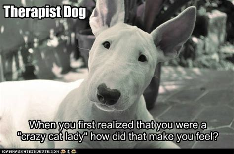 Therapist Dog - I Has A Hotdog - Dog Pictures - Funny