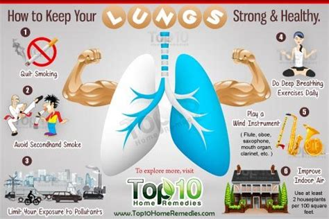 How to Keep Your Lungs Strong and Healthy   Top 10 Home