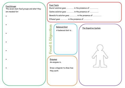 KS3 Food and Digestion Revision Mat | Teaching Resources